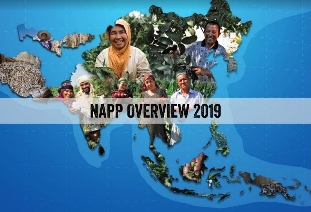 NAPP OVERVIEW 2019